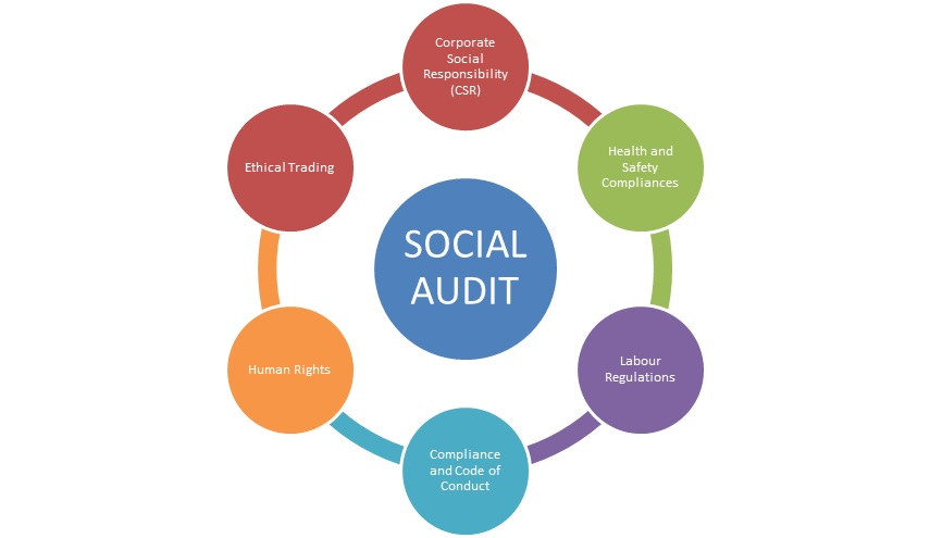 social audit cycle